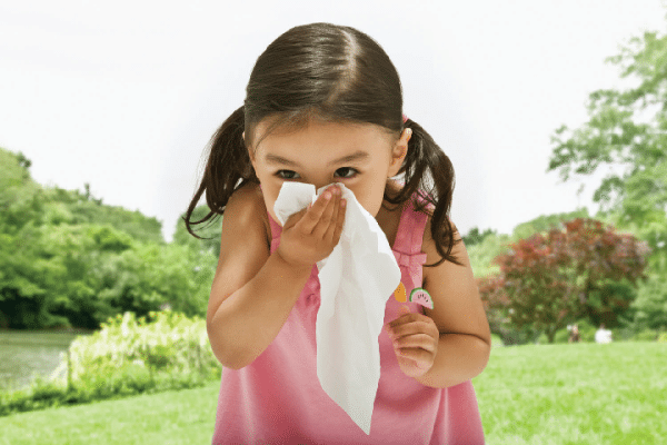 American Standard Air Quality